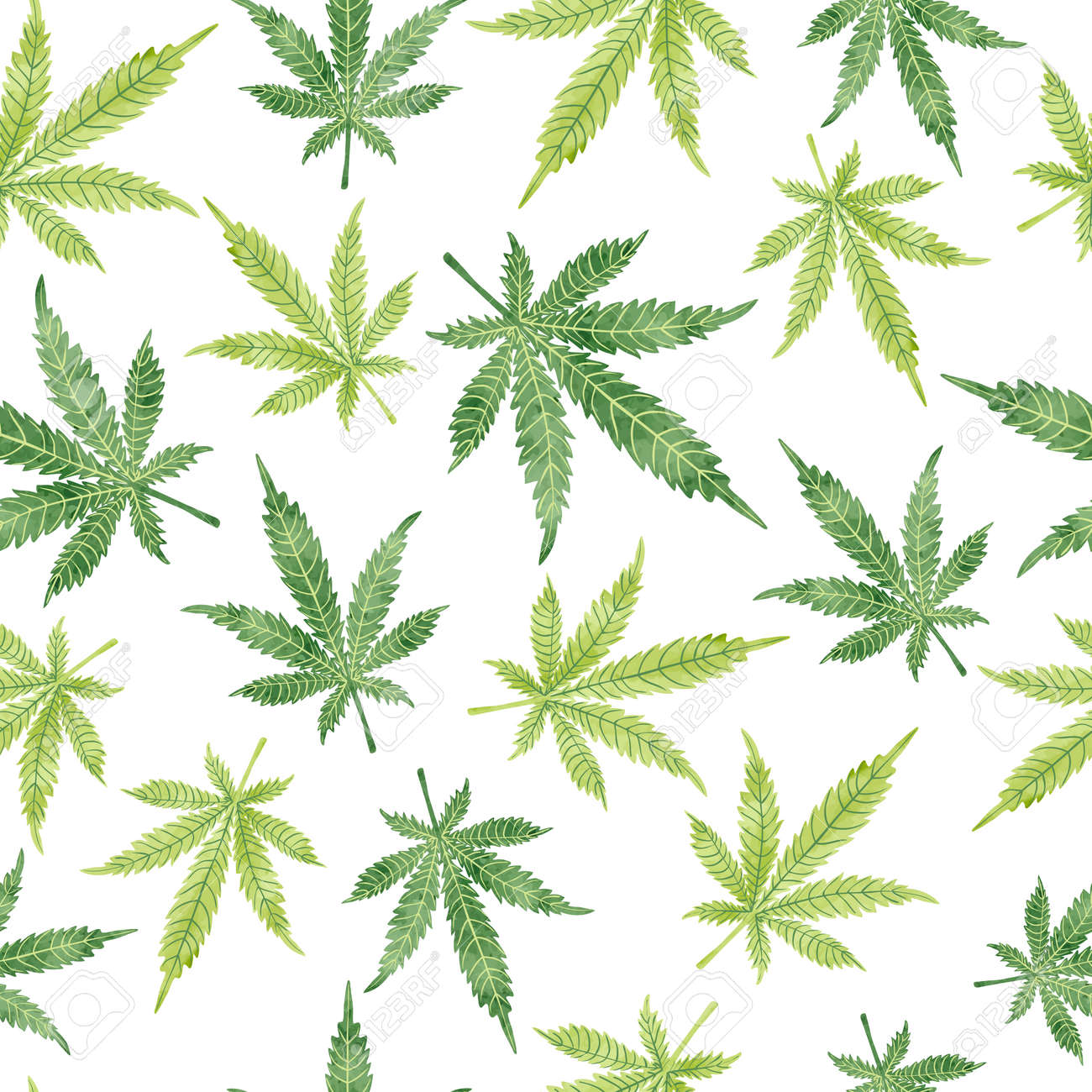 Watercolor Marijuana Leaves Seamless Pattern Vector Cannabis Royalty Free Cliparts Vectors And Stock Illustration Image 64189806