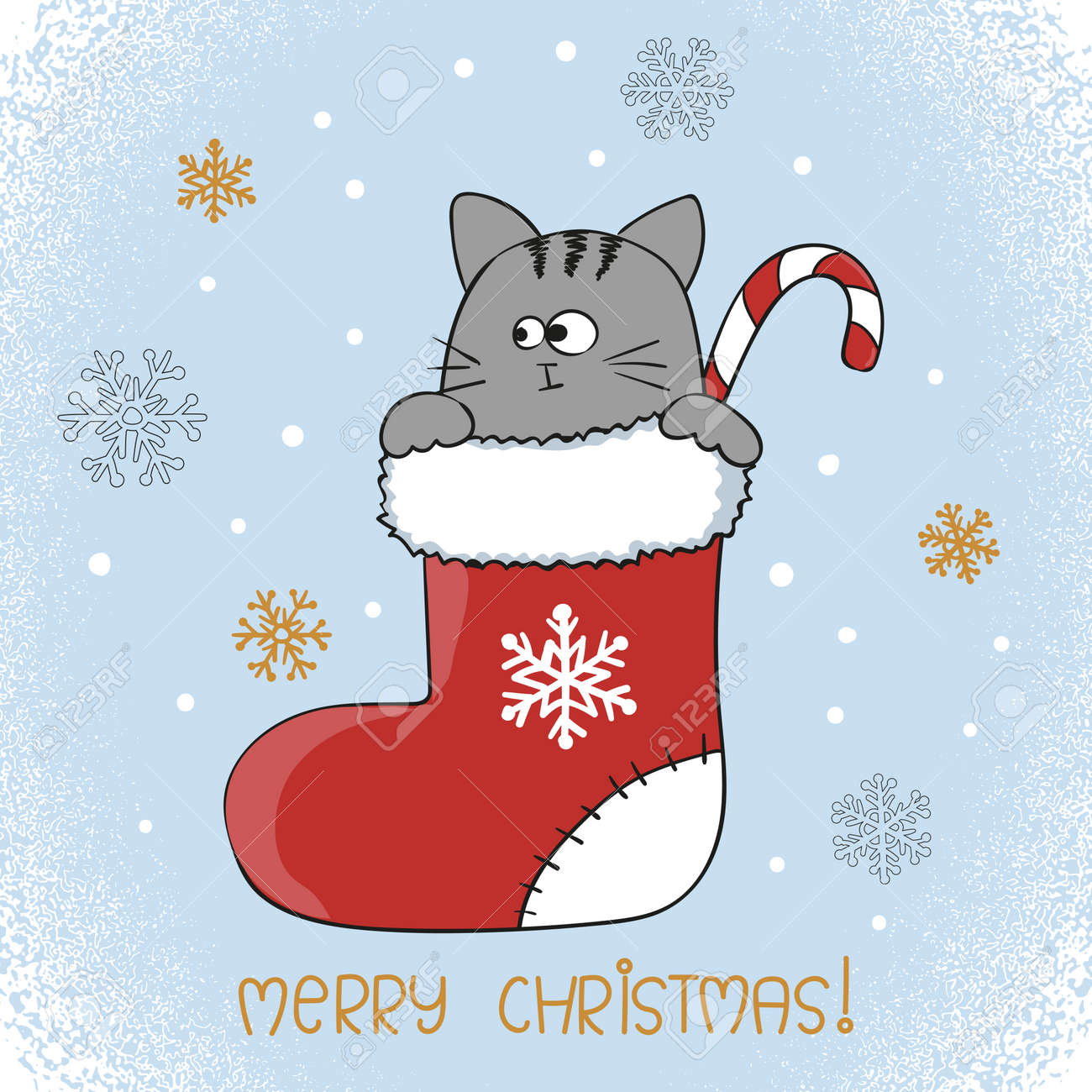 Merry Christmas card design. Cute cat in a Christmas stocking