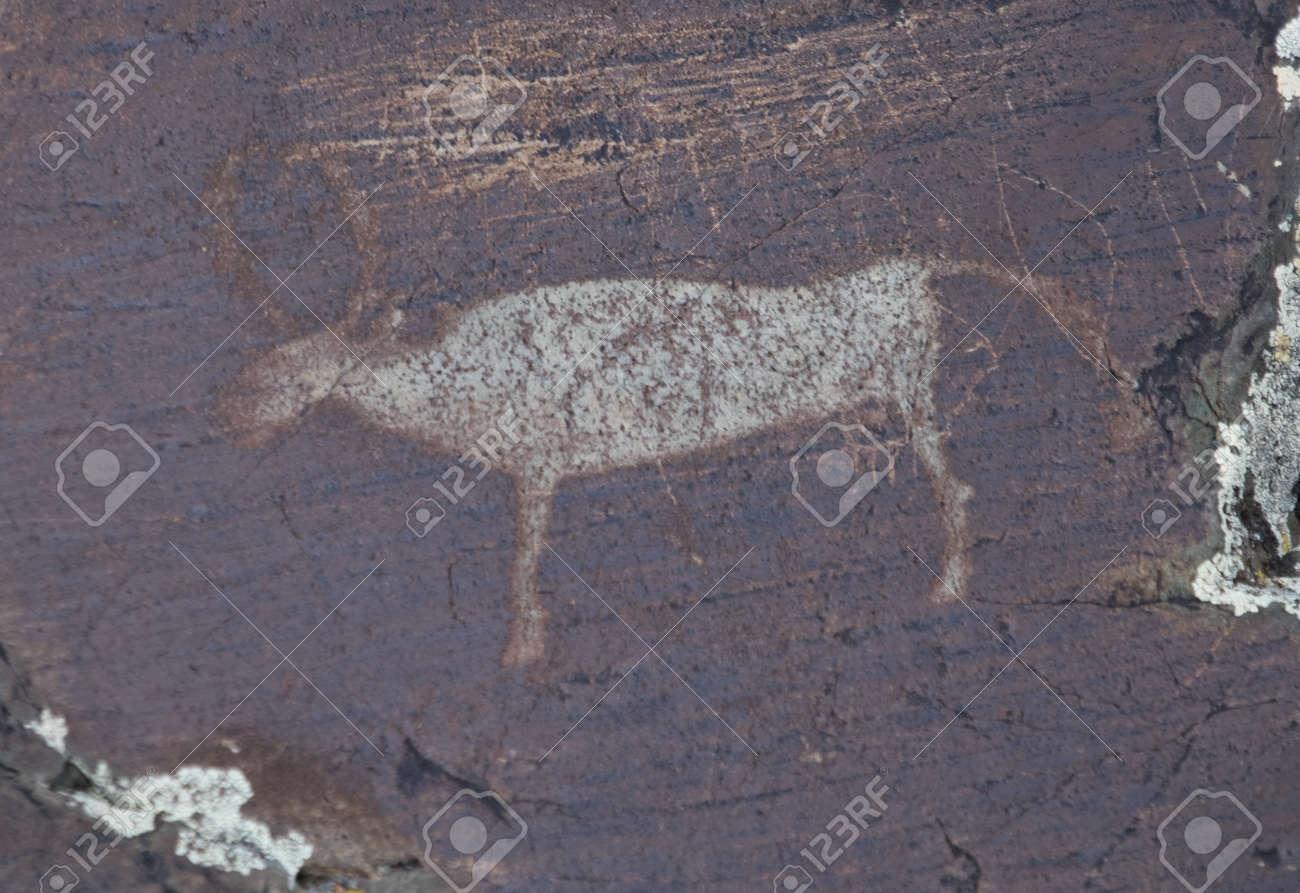アルタイ山脈の青銅器時代のペト...