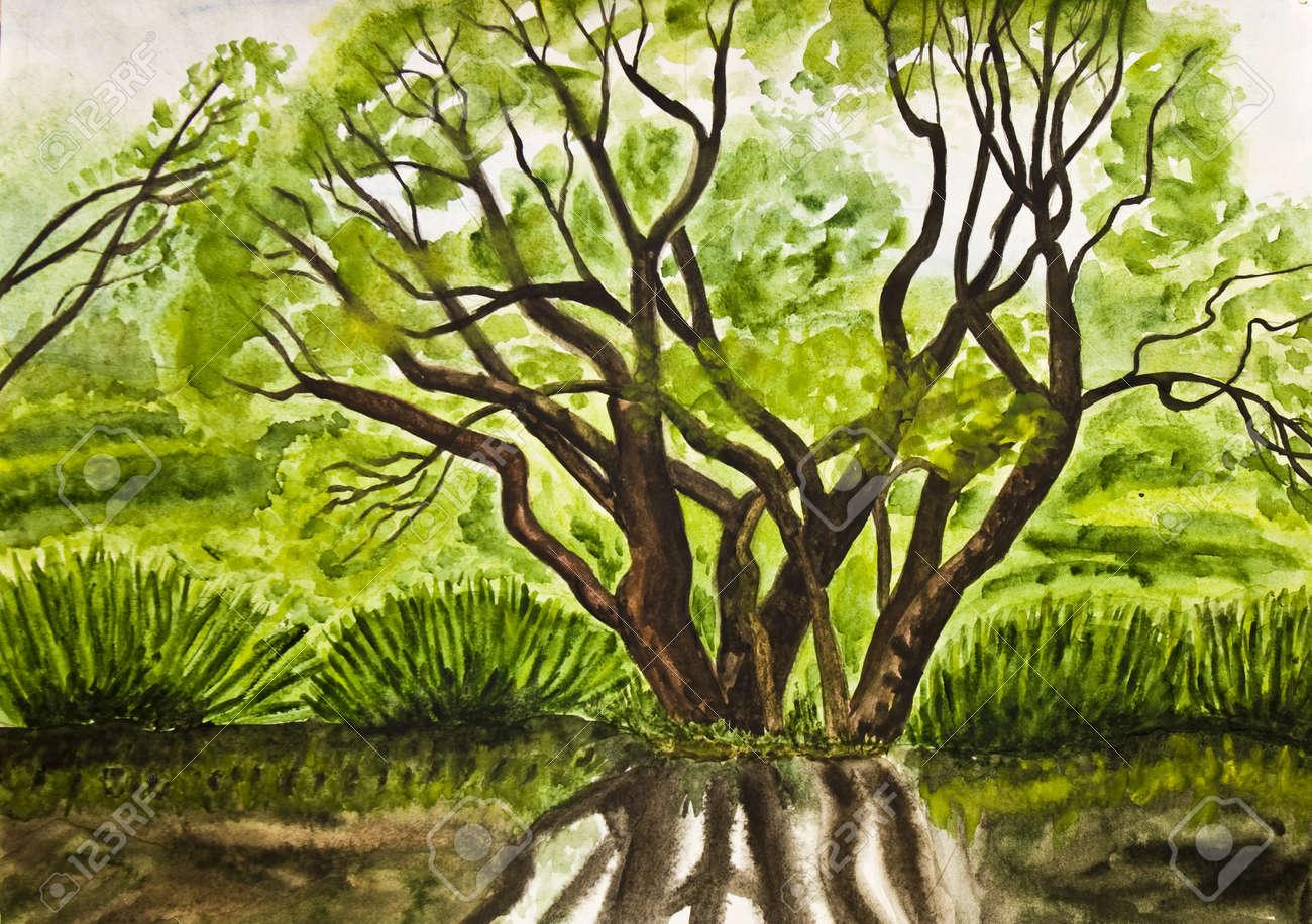 Pintado A Mano Dibujos Acuarelas Paisaje De Verano Con El árbol