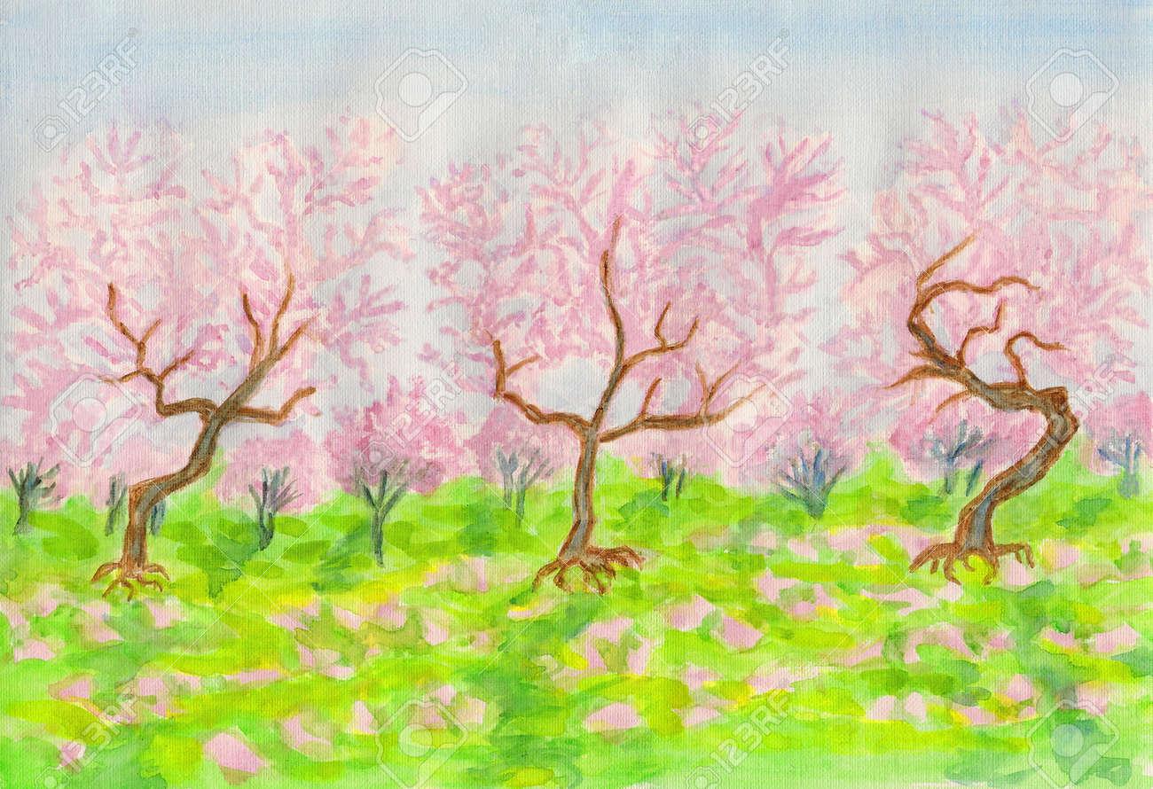 Jardín En Flor En Primavera Con Las Cerezas De Color Rosa Pintado A