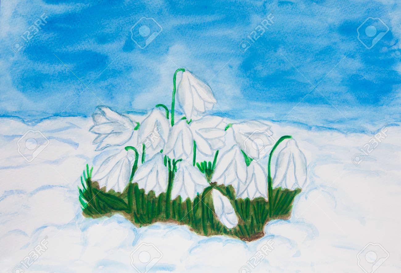 Snowdrops Erste Fruhlingsblumen Im Schnee Illustration Malerei