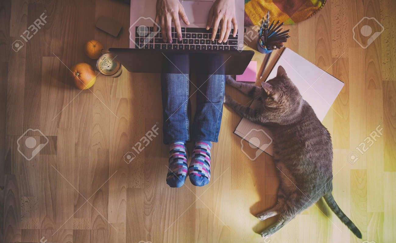 Creative workspace: girl working at the computer assisted by her cat. - 55938480