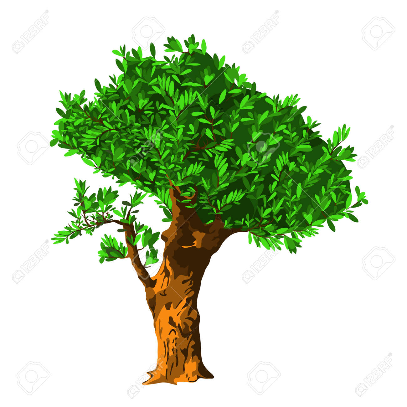 Olive Tree. Vector Illustration. Drawing Royalty Free Cliparts ...