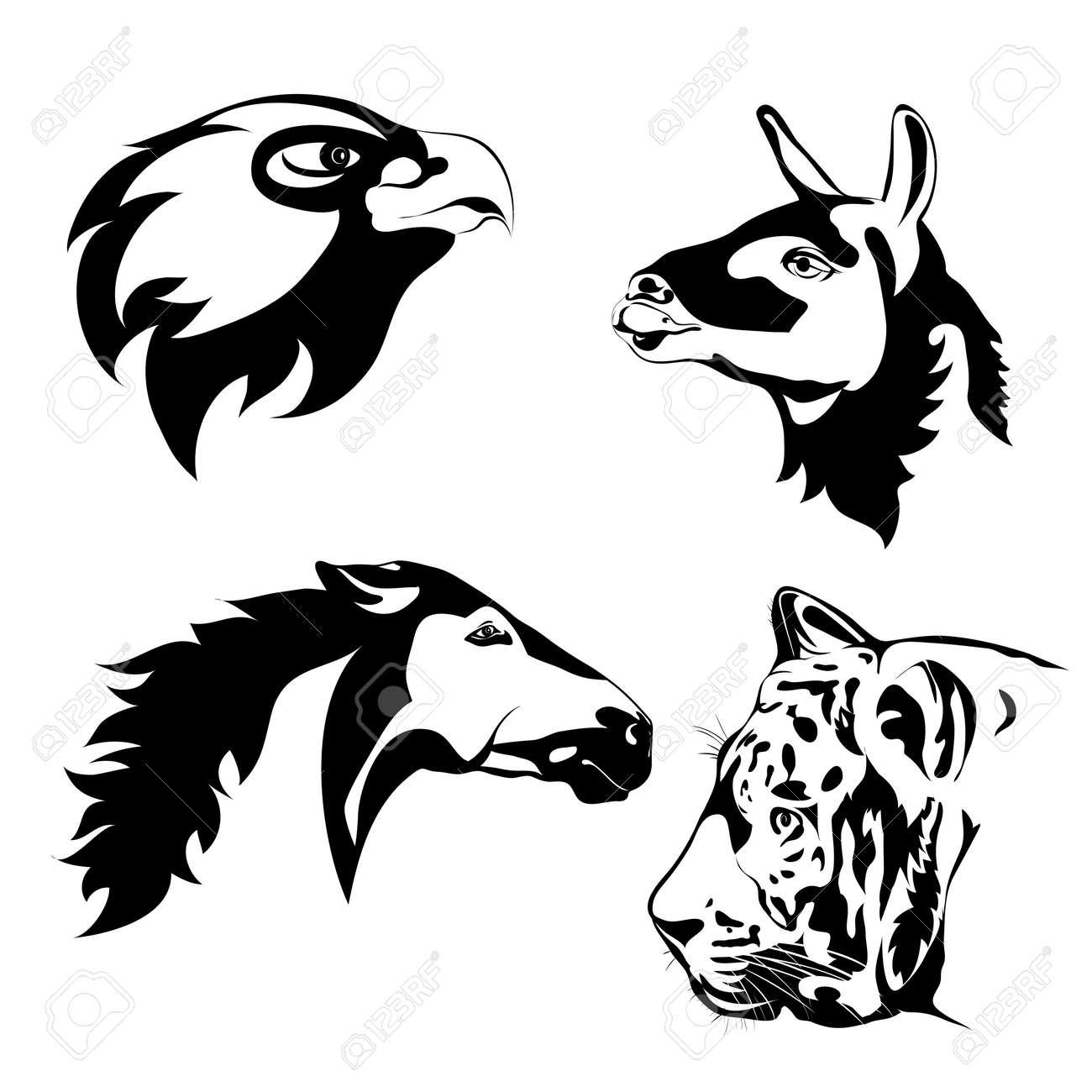 image animaux vectoriel