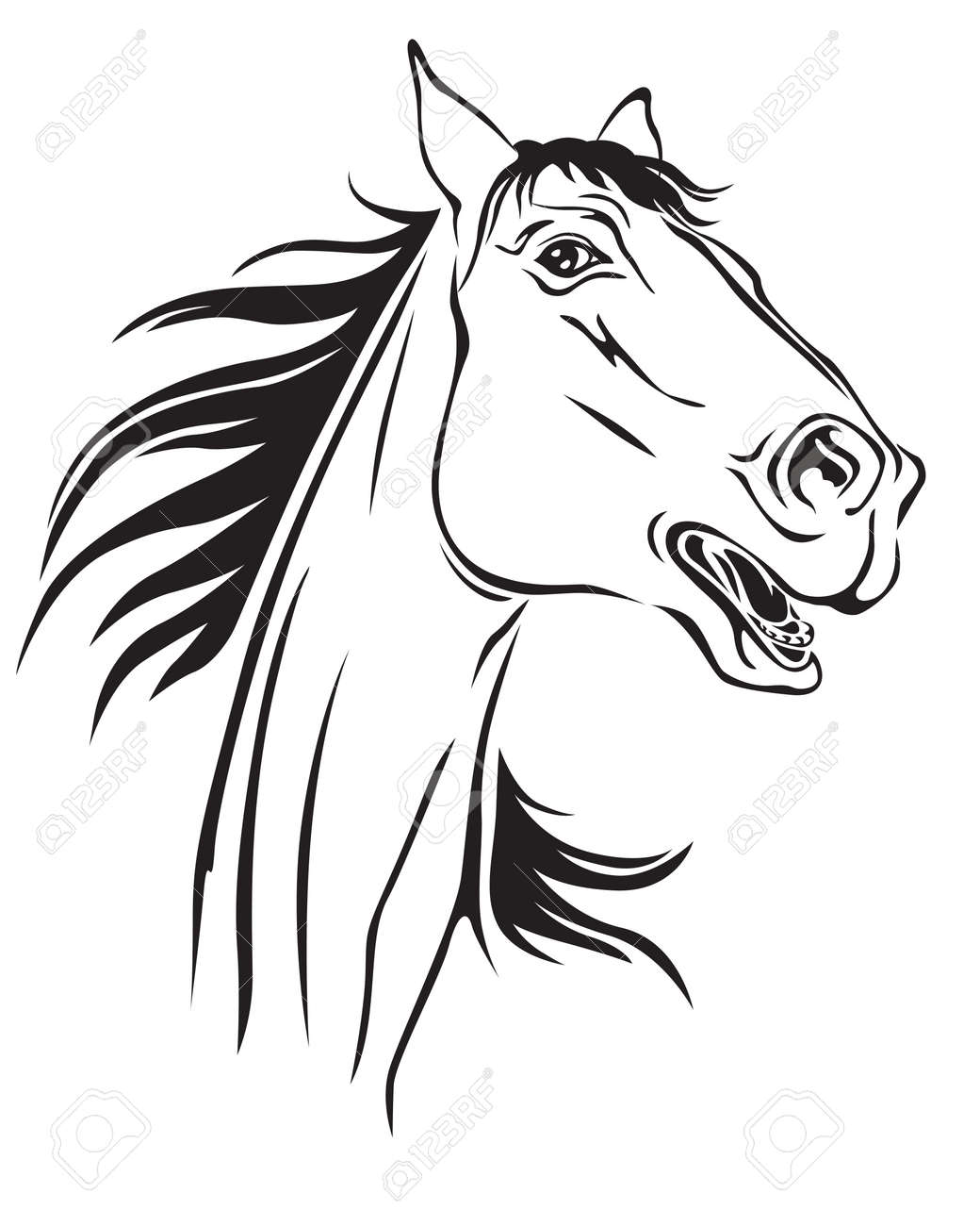 Contour image of a beautiful neighing horse Stock Vector - 23551864