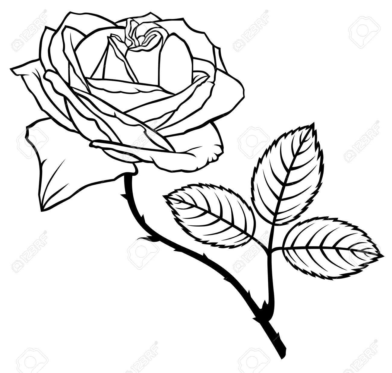 Contour Black And White Image Rose Flower Royalty Free Cliparts