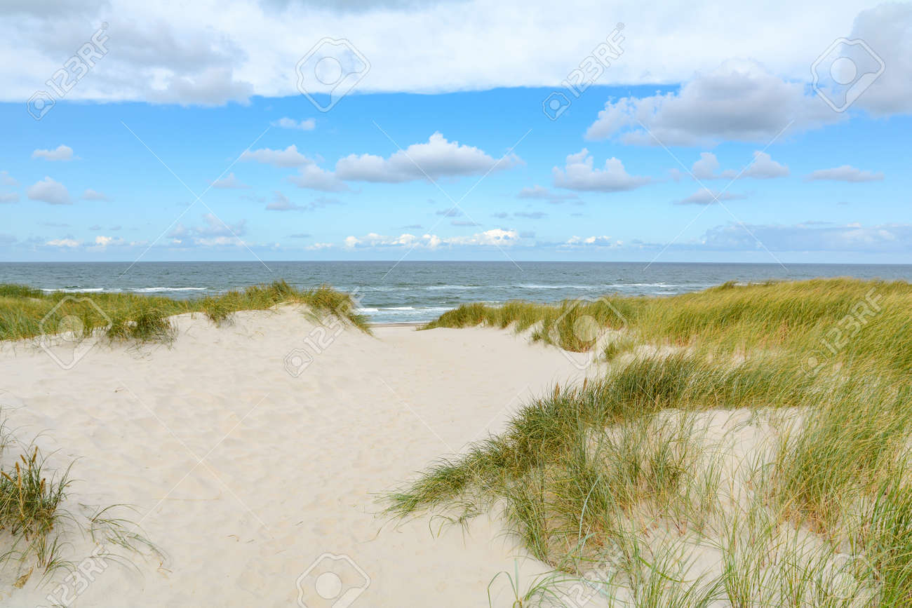 View on the beautiful landscape with sand and dunes at the North Sea, Jutland Denmark - 111866917