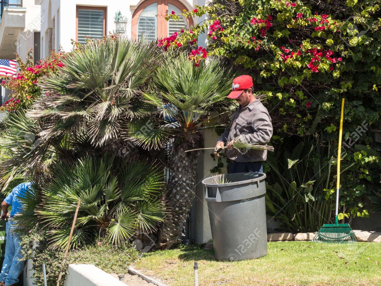 mexican gardener stock photo 64948199