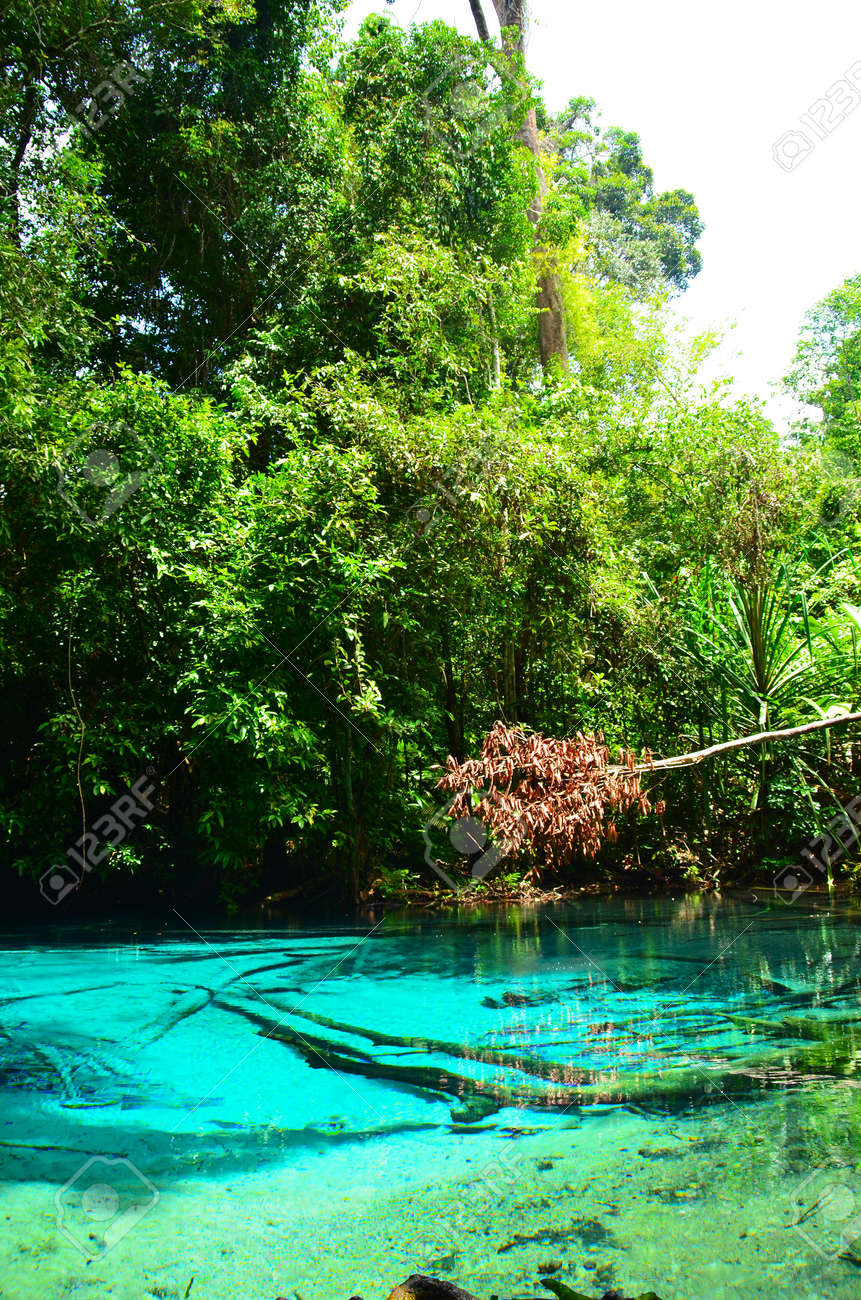 emerald pool or blue pool Stock Photo - 15937697