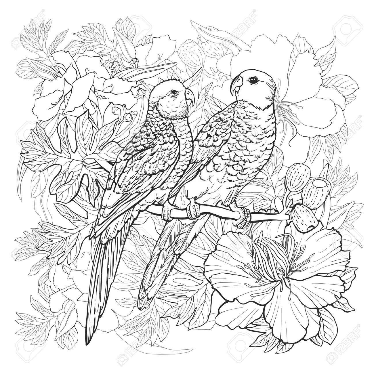 Dibujo Lineal De Dos Loros Y Flores Exóticas Para Colorear