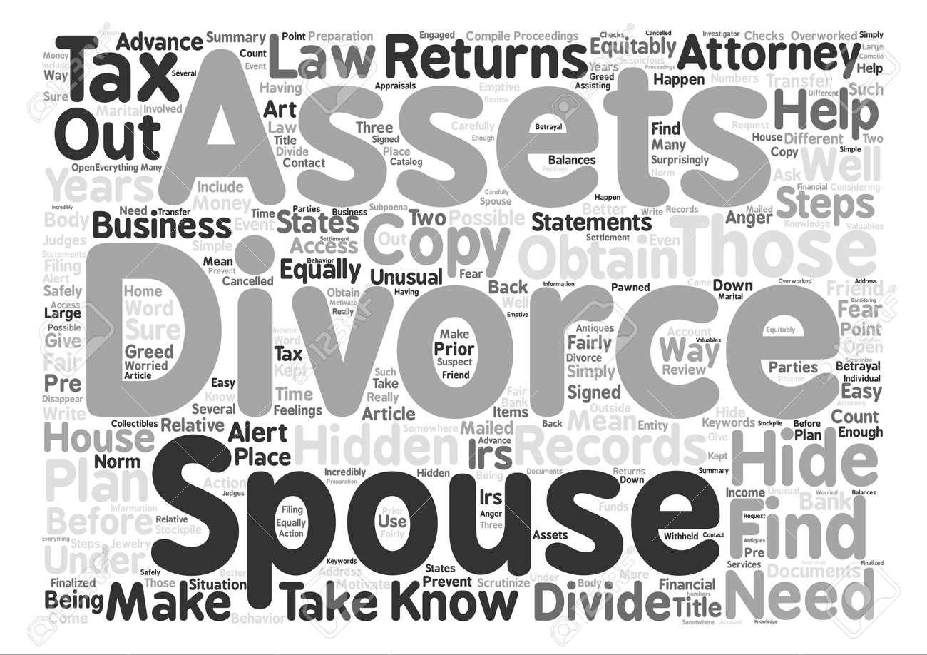 Divorce and Hidden Assets Word Cloud Concept Text Background - 73728580