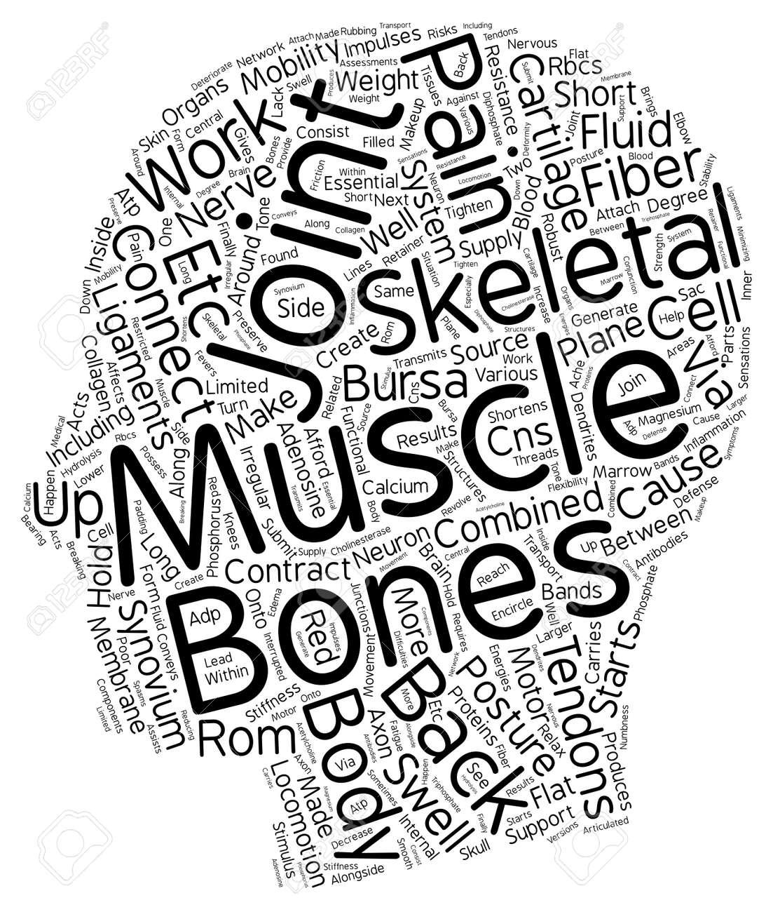 Como Los Músculos Esqueléticos Causan Espalda Dolor Concepto De ...