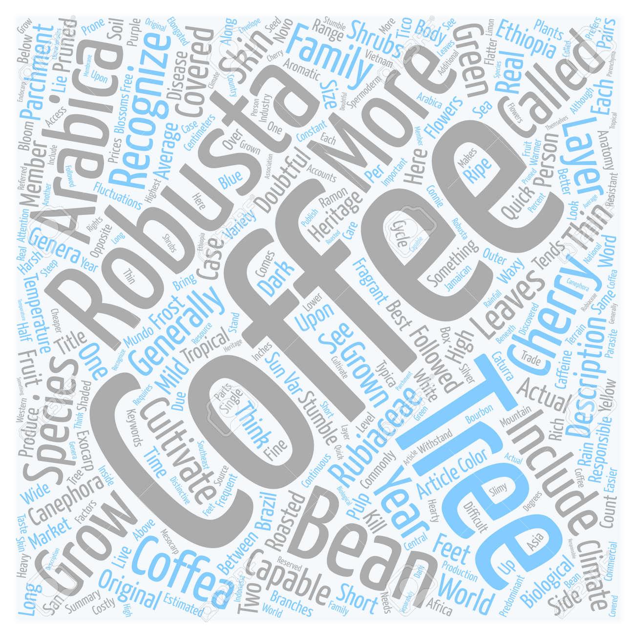 La Anatomía De Un árbol De Café De Texto Concepto De Fondo Wordcloud ...