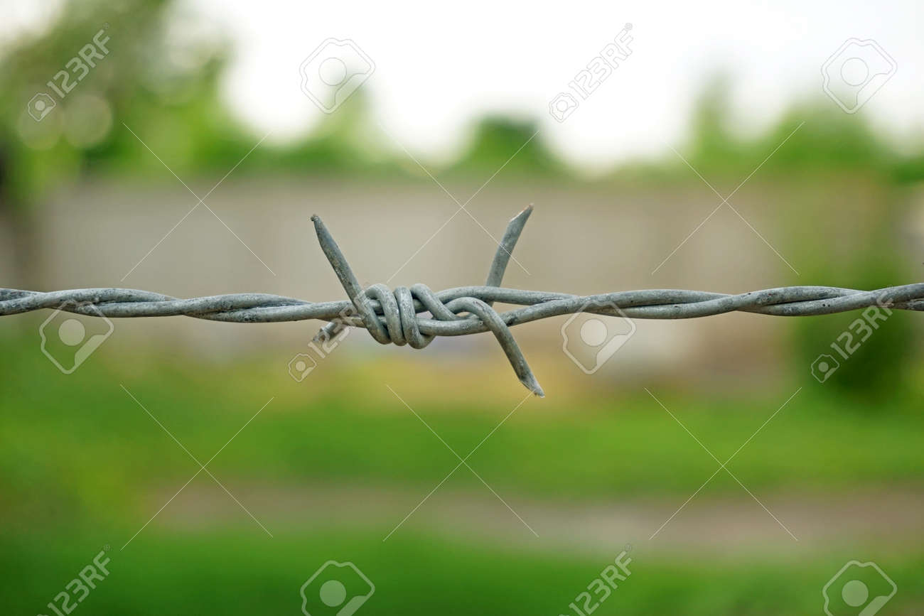 Rusty barbed wire Stock Photo - 30239423