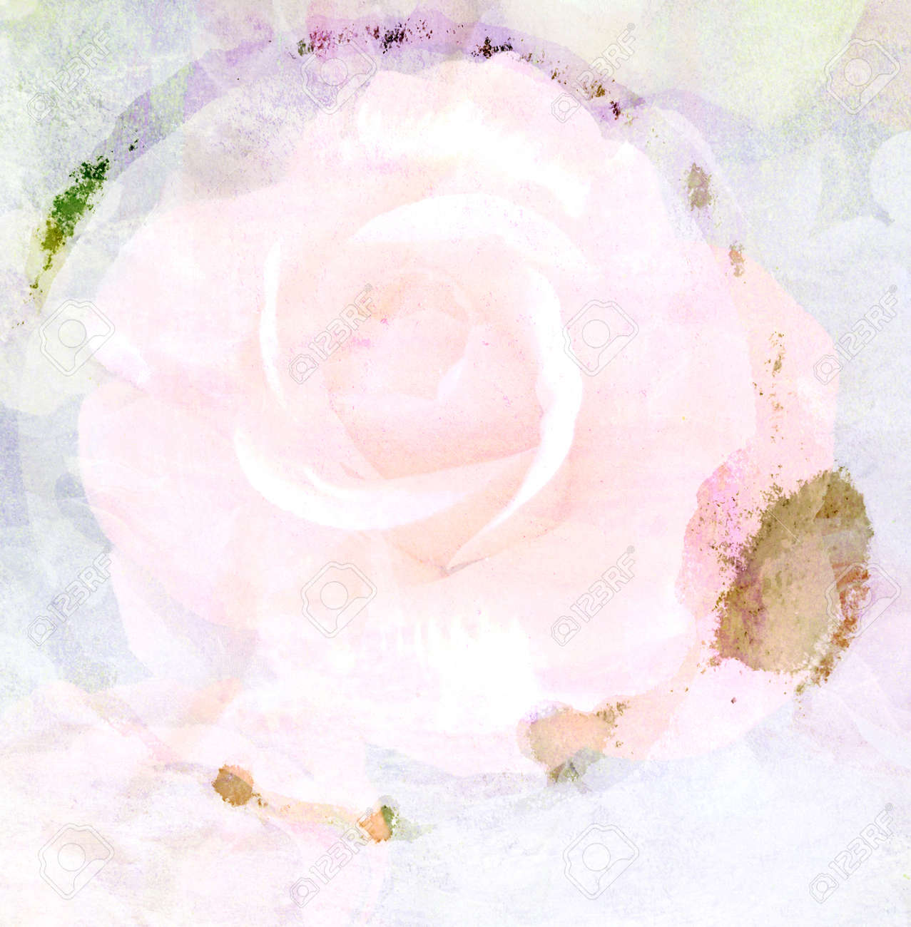 Bottom Cup Stain Of Water On Rose Flower Paper Background Stock