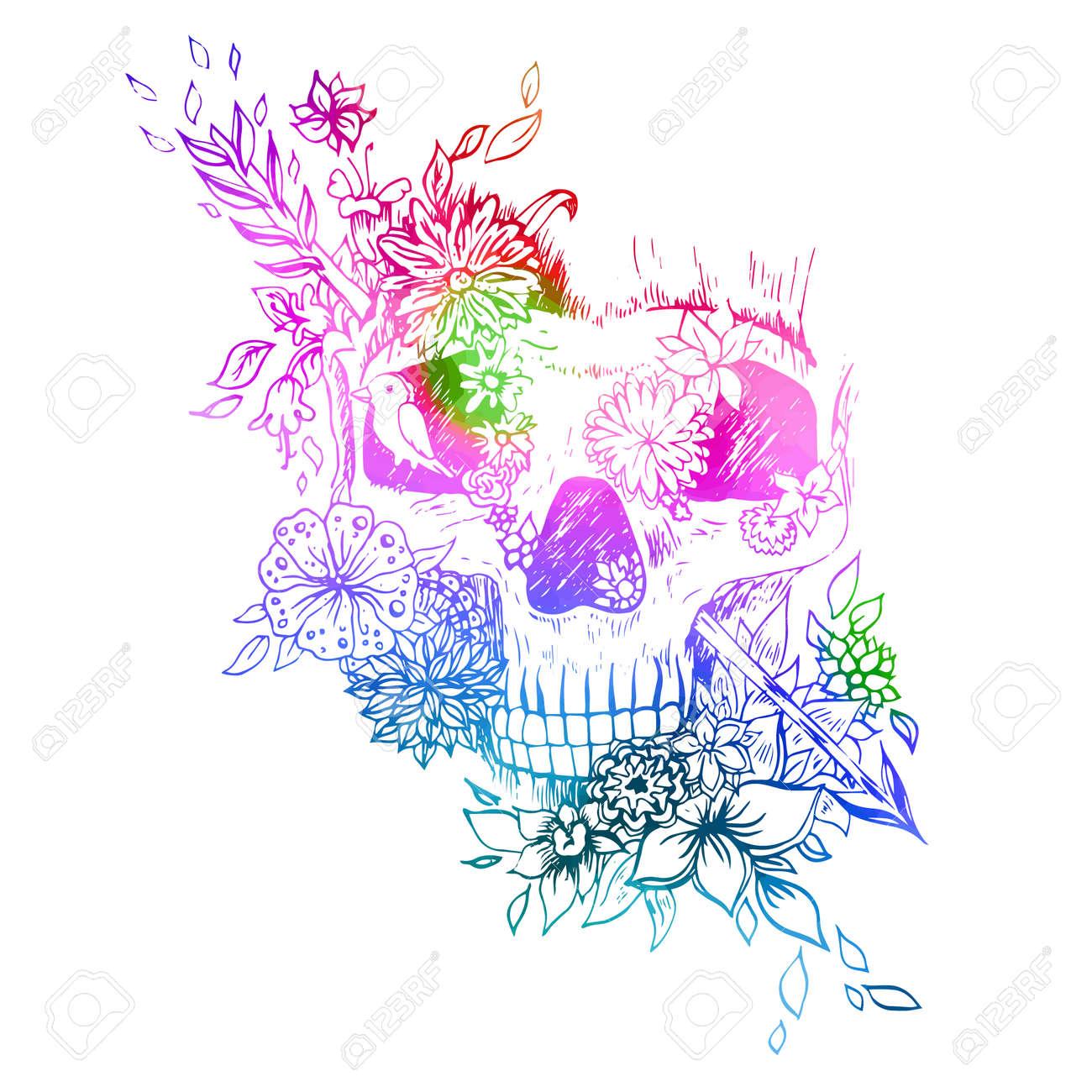 Acuarela Cráneo Aislado. Esbozo De Grabado. Cráneo De Vectores De ...