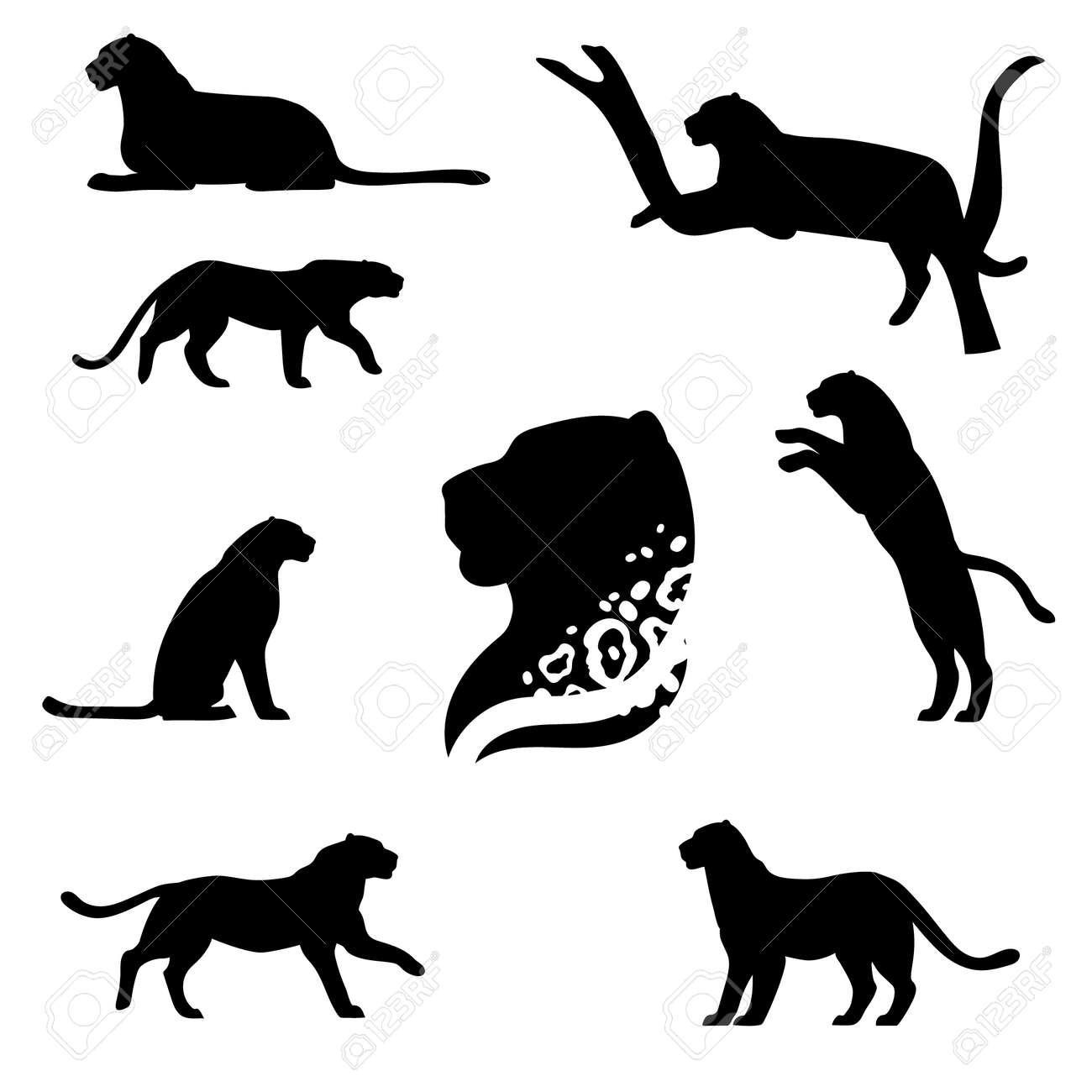 ヒョウは、黒いシルエットのセット。アイコンや動物のイラスト。野生動物