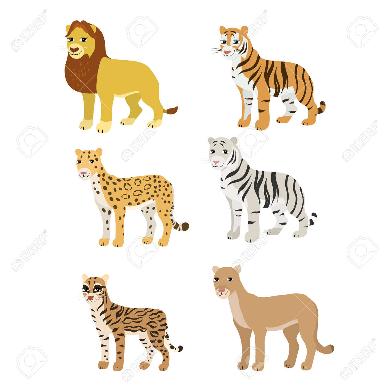official photos e424d 0b941 Vector - Vector cartoon animals  lion tiger leopard white tiger puma  ocelot. The drawn set of wild cats. Collection of stylized predators in a  flat style.