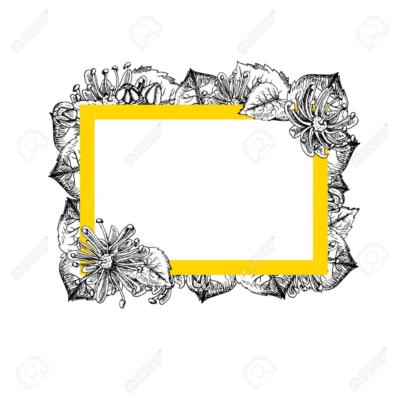 8d6ba864872e2 Marco Rectangular Con Flores De Tilo. Diseño De La Vendimia Gráfico En  Blanco Y Negro. Plantilla Con Flores De Tilo. Patrón De Estilo De La  Vendimia.