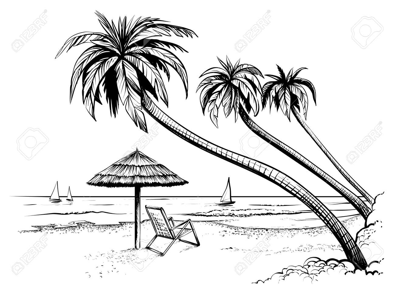Charming Ocean Or Sea Beach With Palms, Sketch. Black And White Vector Illustration  Of Sea