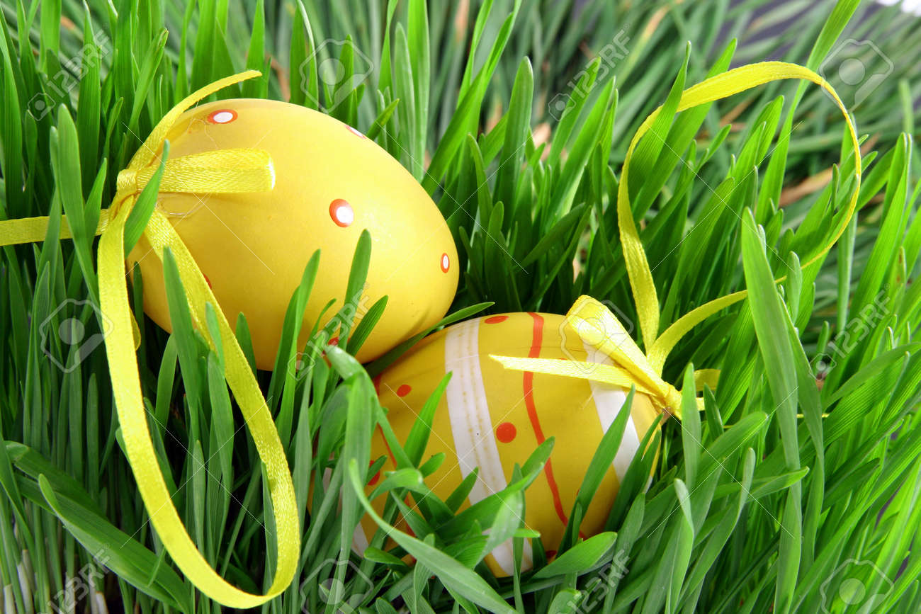 Concept for the for the French April holidays. Easter eggs with node hidden in green grass - 165941227