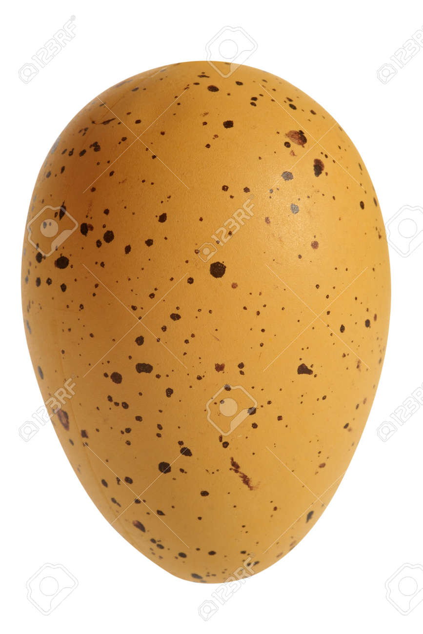 Easter celebration concept: Decorated chicken egg, cut out and isolated on white background - 165942220
