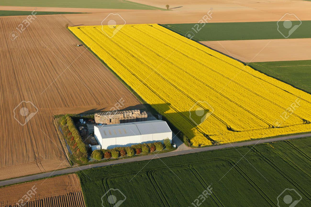 Aerial photograph of a farm in a rapeseed field in Ablis, in Yvelines, ÃŽle-de-France region, France. - 166832602