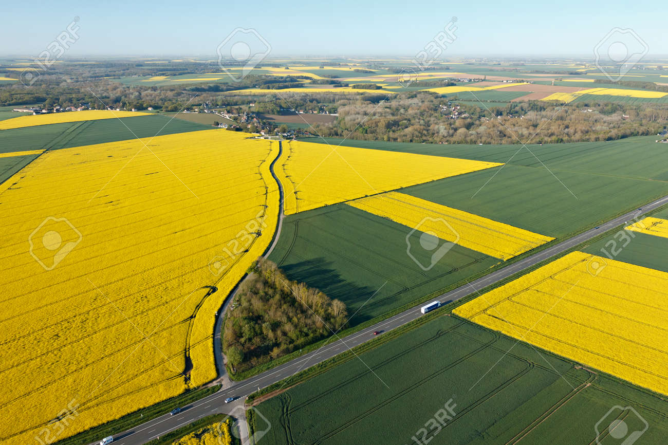 rapeseed fields seen from the sky in the fields of Beauce with the national road, town of Gué-de-Longroi, department of Eure-et-Loir in Center-Val de Loire, France. - 166832606
