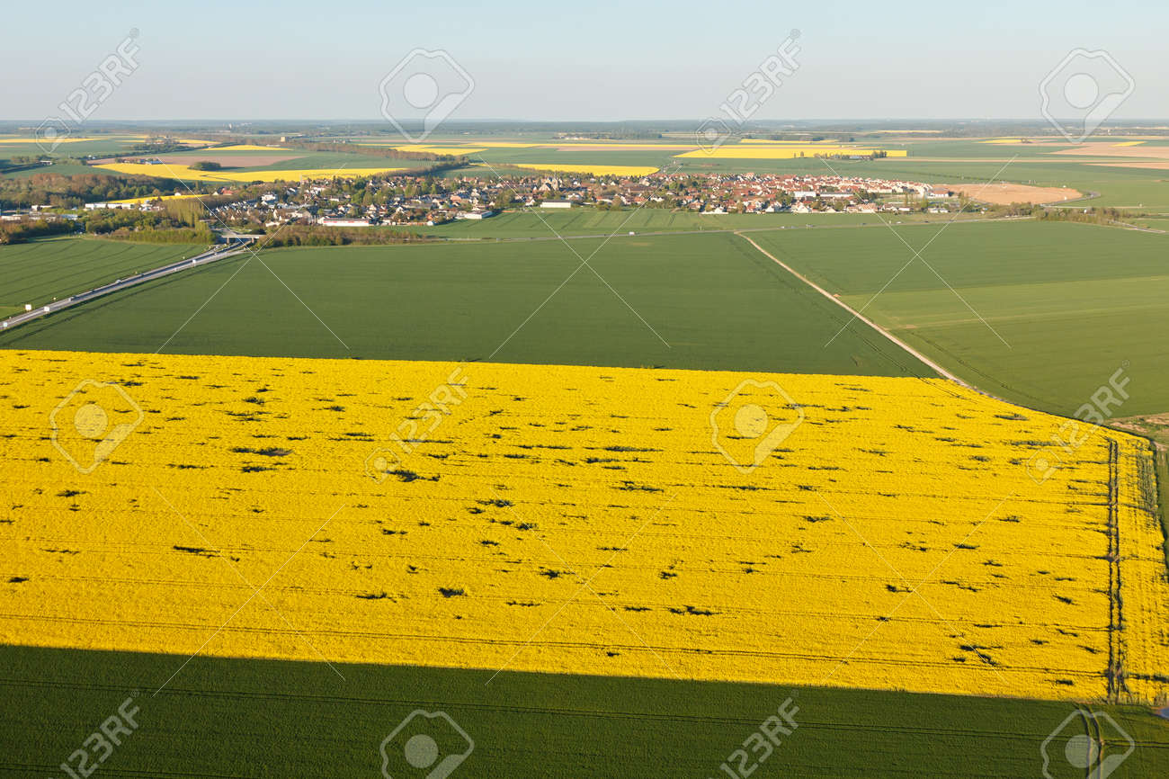 Aerial photograph of a rapeseed field in Ablis, in the south of the Yvelines department, in the ÃŽle-de-France region, France. Municipality of the natural Beauce located between Rambouillet (78) and Chartres (28). - 166832609