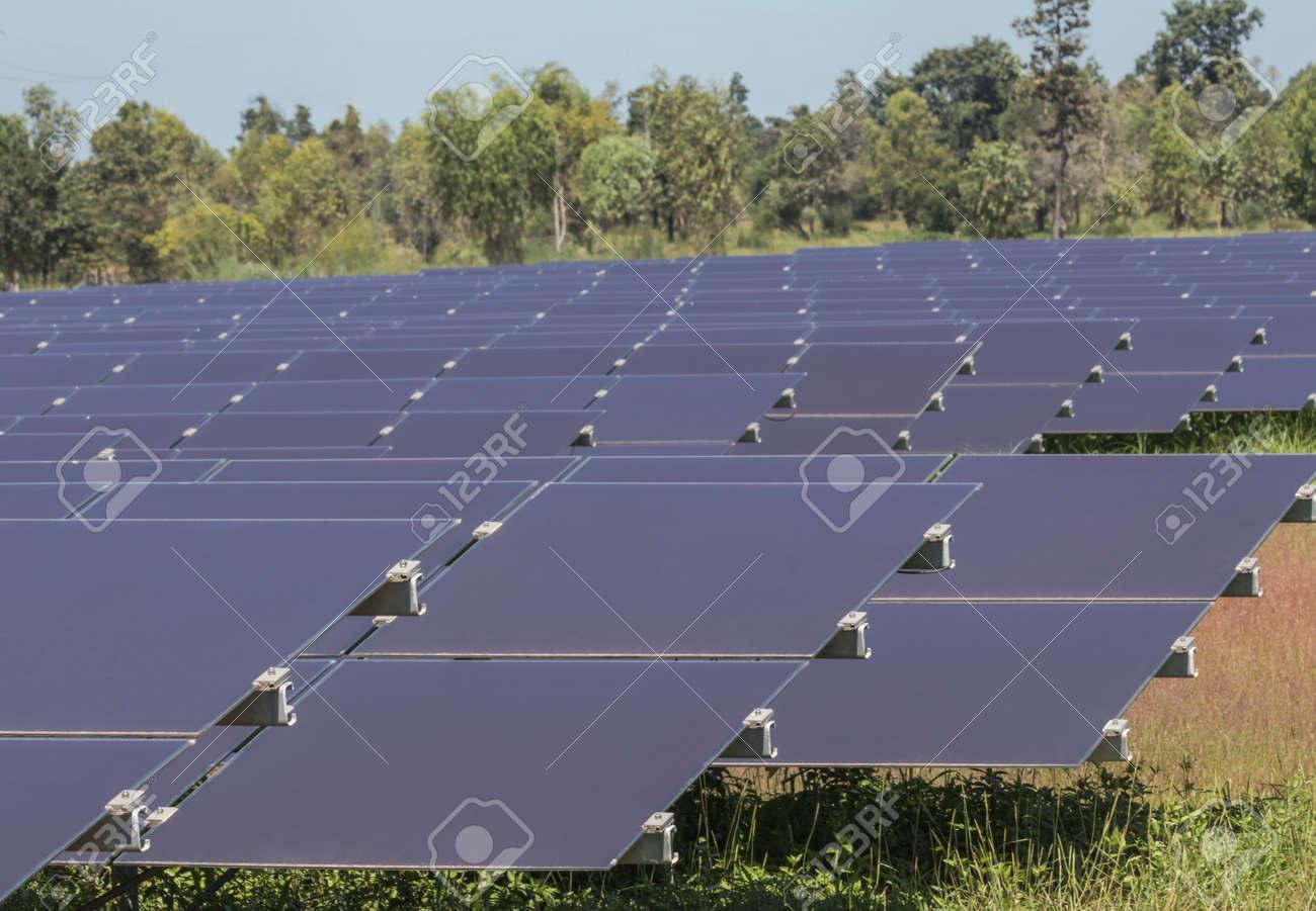 Cellule Photovoltaïque En Silicium Amorphe avec bouchent la rangée de cellules solaires de couche mince ou de