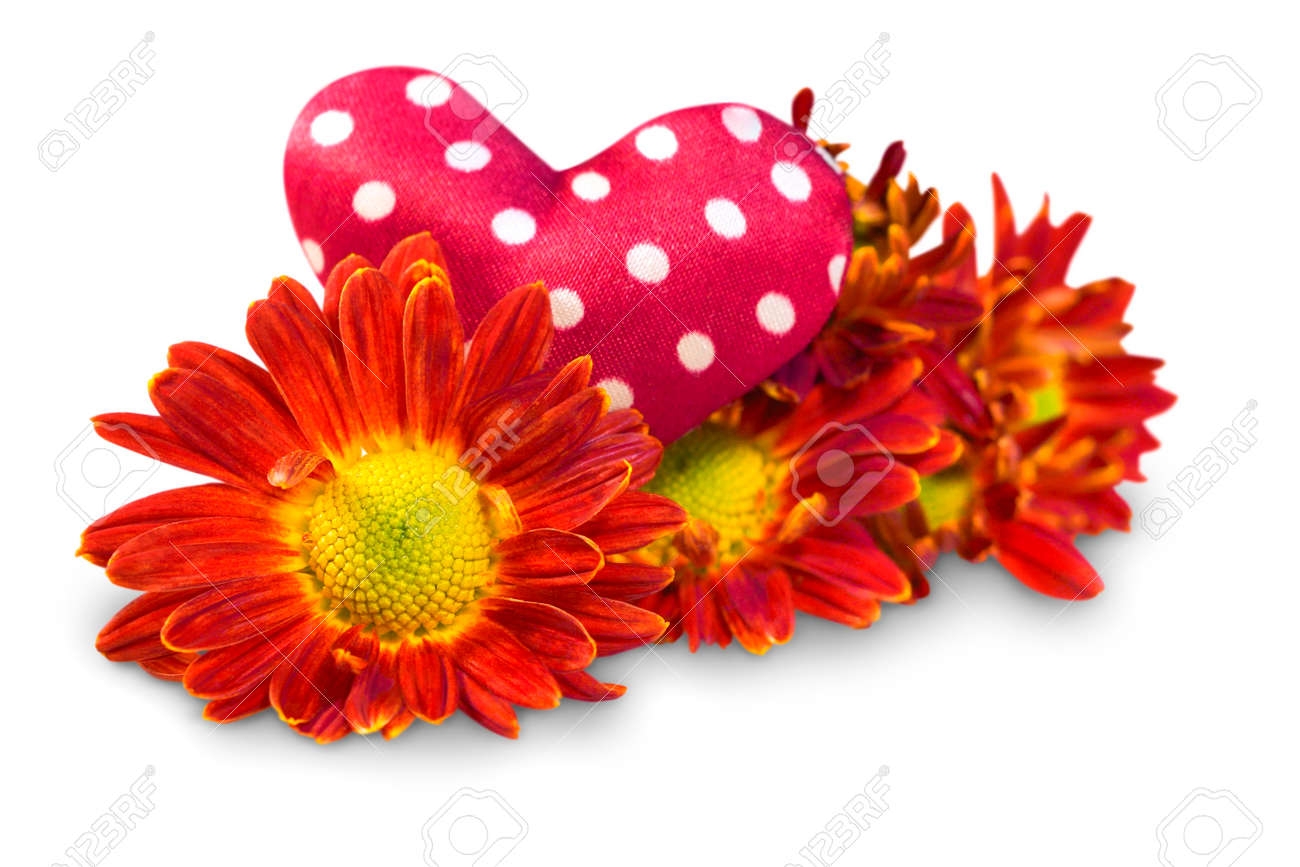 Flowers With Hearts On A White Background Stock Photo Picture And