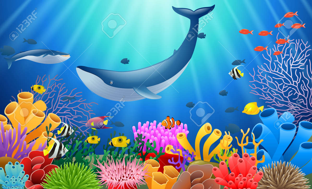 cartoon whale with coral reef underwater in ocean royalty free