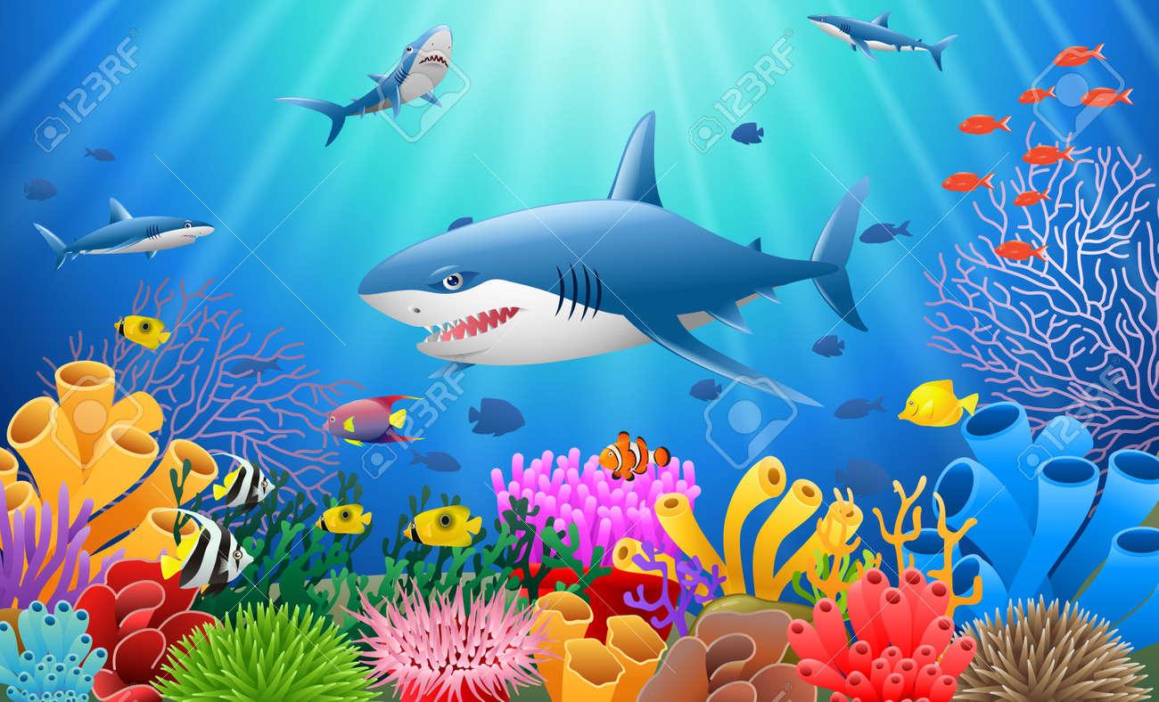 Cartoon shark with Coral Reef Underwater in Ocean - 87737470