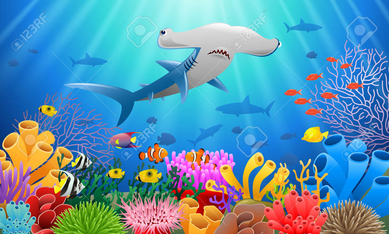 cartoon hammer shark with coral reef underwater in ocean royalty