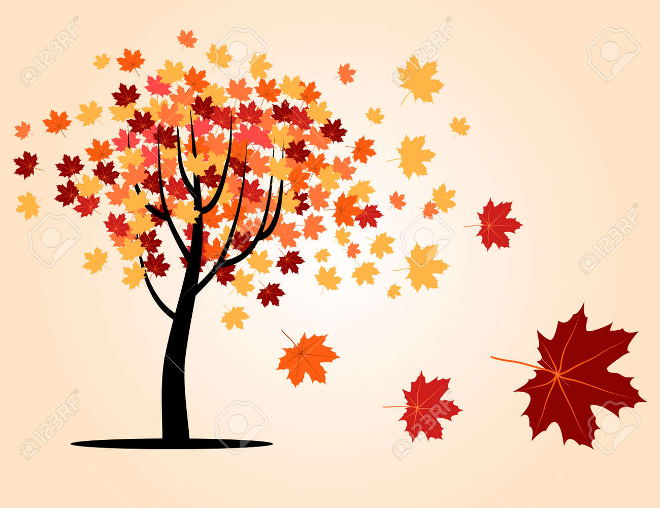 autumn maple tree with falling leaves Stock Vector - 16128082