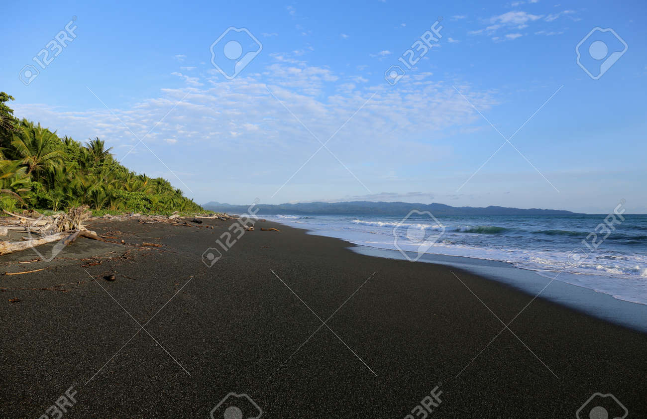 Black Sand Beach In Costa Rica Stock Photo Picture And Royalty Free