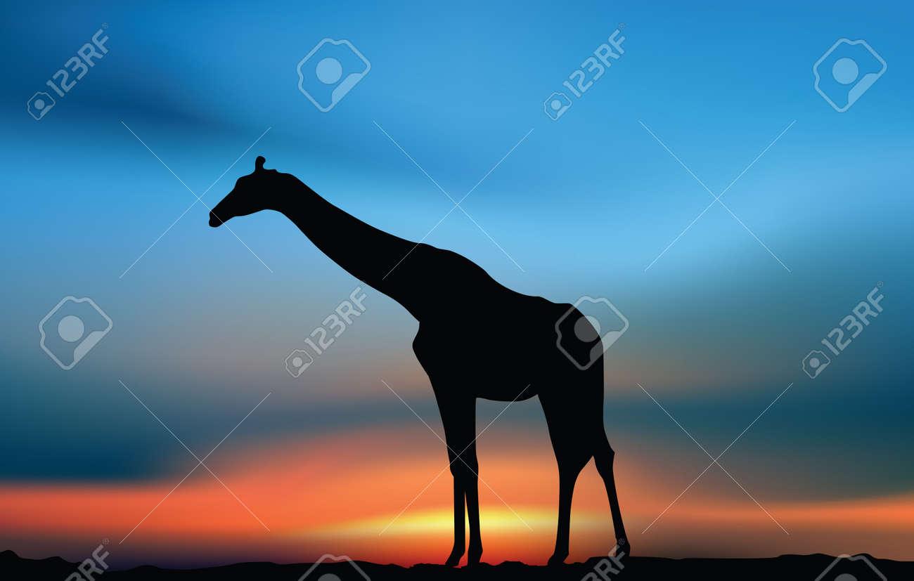 Giraffe in the savanna at the sunset Stock Vector - 14880980