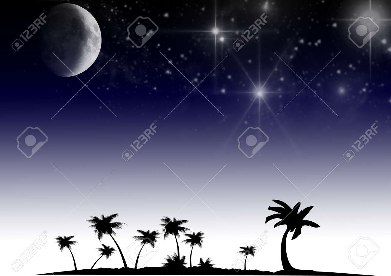 Black trees and the stars Stock Photo - 15121272