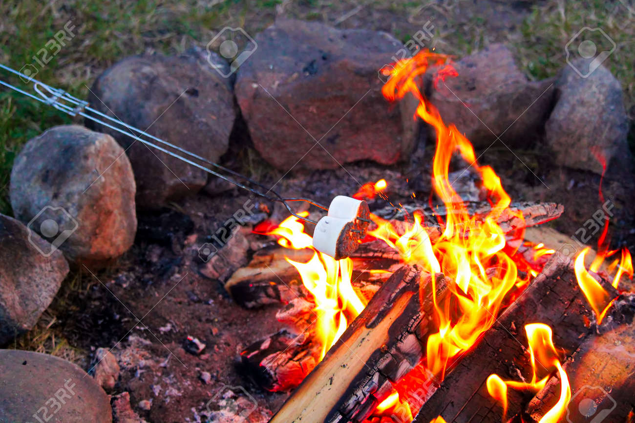 Roasting Marshmallows For Smores Over A Colorful Campfire Stock Photo