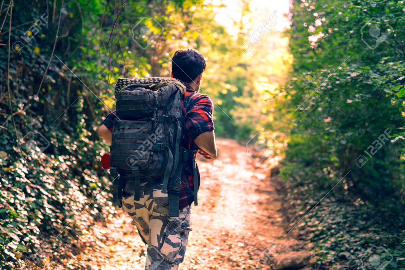Young man trekking in woods walking on the path to the sunlight - Rear view of hiker on trail in fall day light - Concept of travel adventure alone in the nature - Backlight image vintage filter look - 135103941