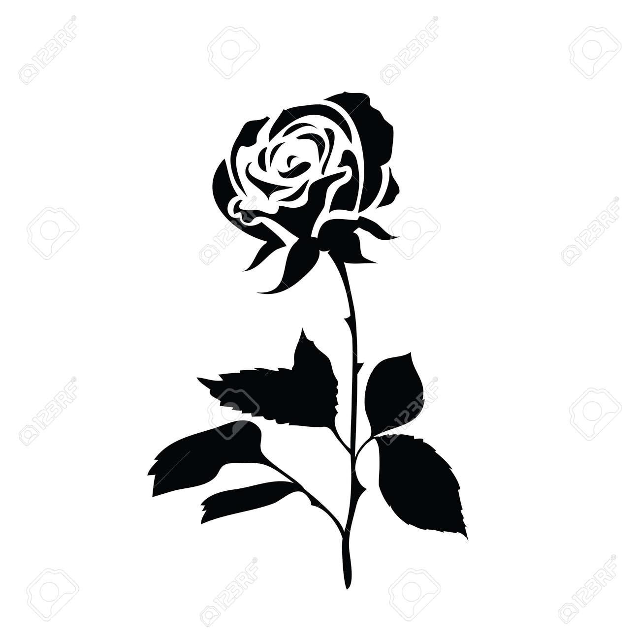 Silueta Estilizada De Una Rosa Blanco Y Negro Icono Aislado En Un