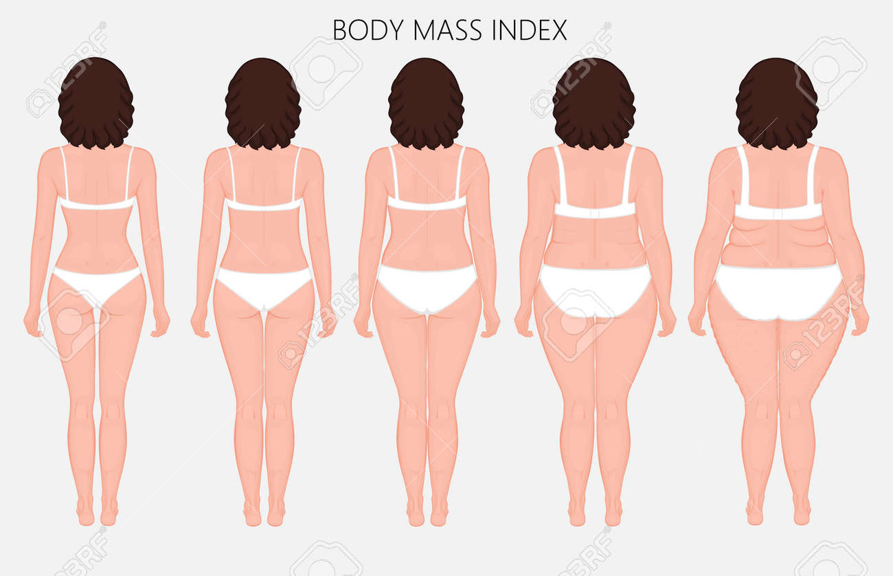Illustration Human Body Mass Index European Woman From Lack
