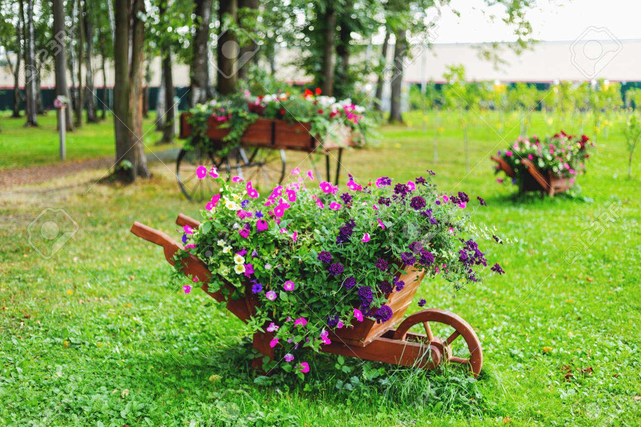 Flowerbed Shaped As A Wooden Wheelbarrow. Garden Decoration With ...