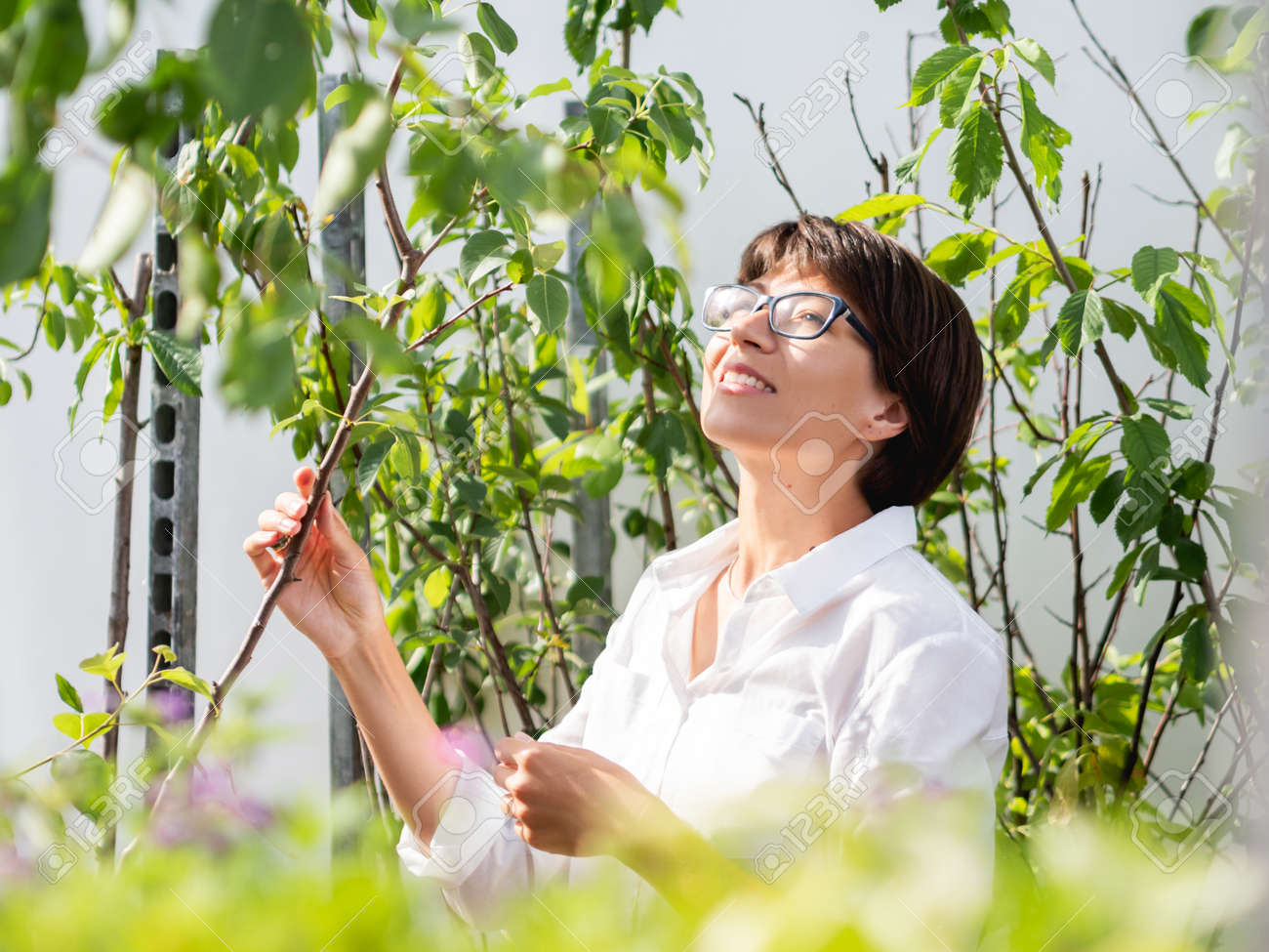 Woman chooses plants and trees for landscaping. Outdoor shelves with seedlings, flowering plants and seeds in flower shop. Open air agronomic market. - 172806607