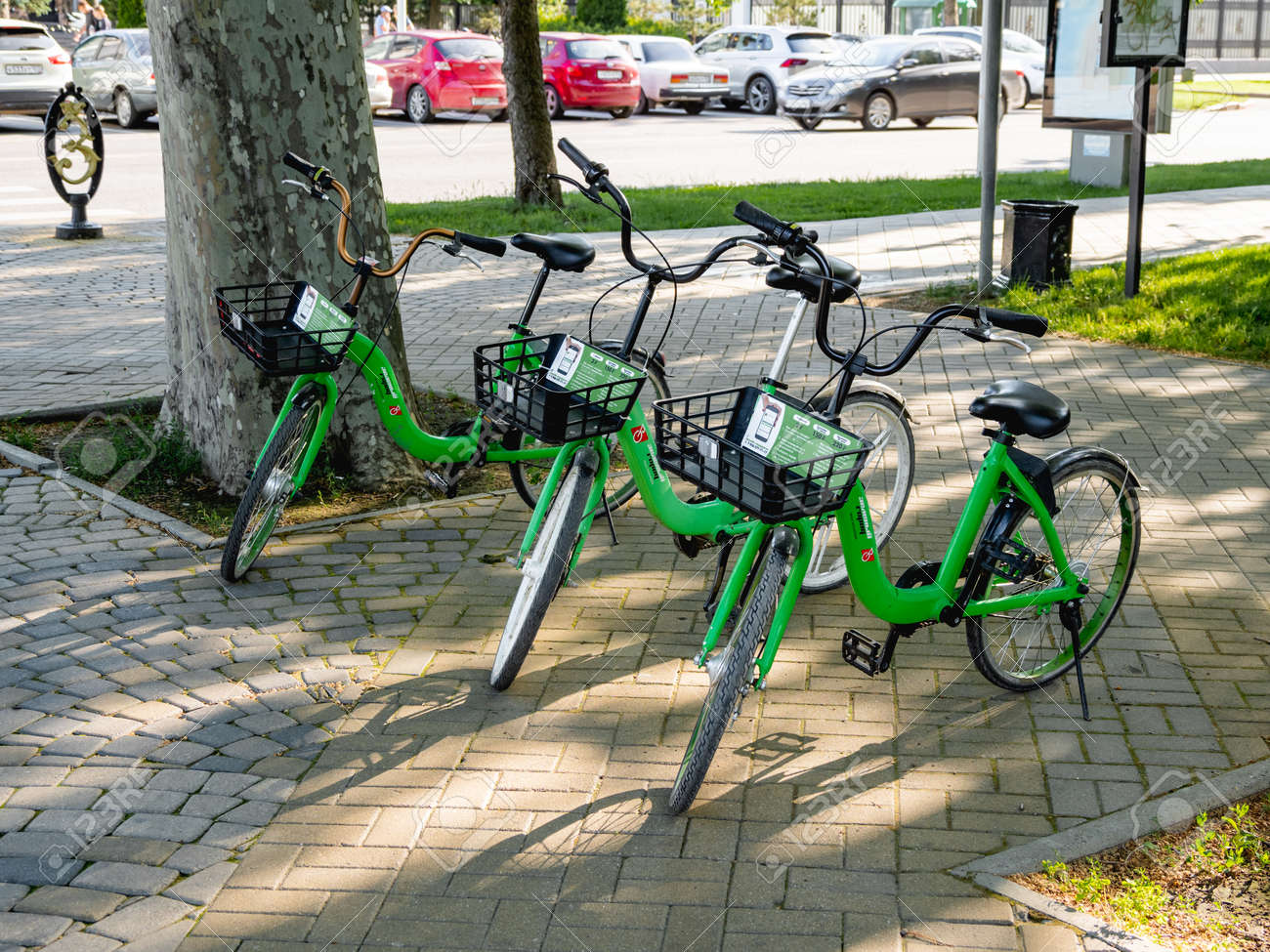 KRASNODAR, RUSSIA - June 02, 2021. Bicycles for rent in urban park. Eco-friendly and comfortable urban transport for tourists and locals. - 172456679