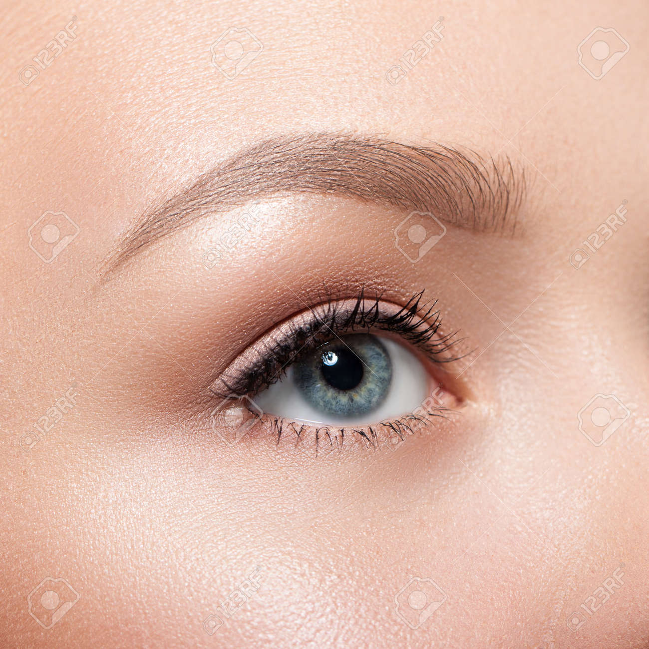 Beautiful Gray Female Eye Close Up Natural Makeup Perfect Eyebrows