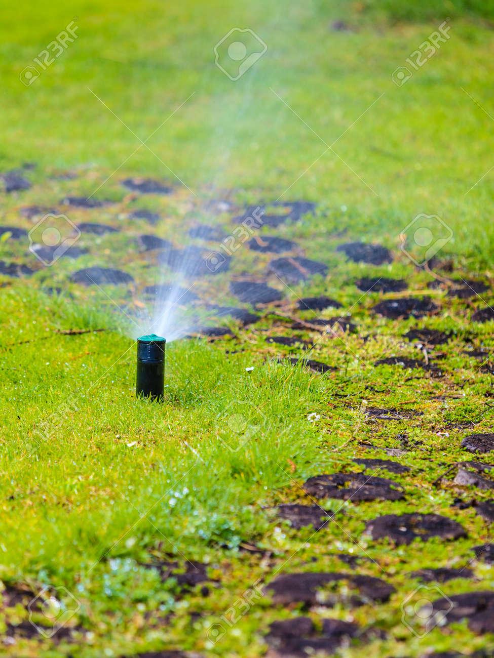 Gartenarbeit Rasensprenger Verspruhen Von Wasser Uber Grune Gras