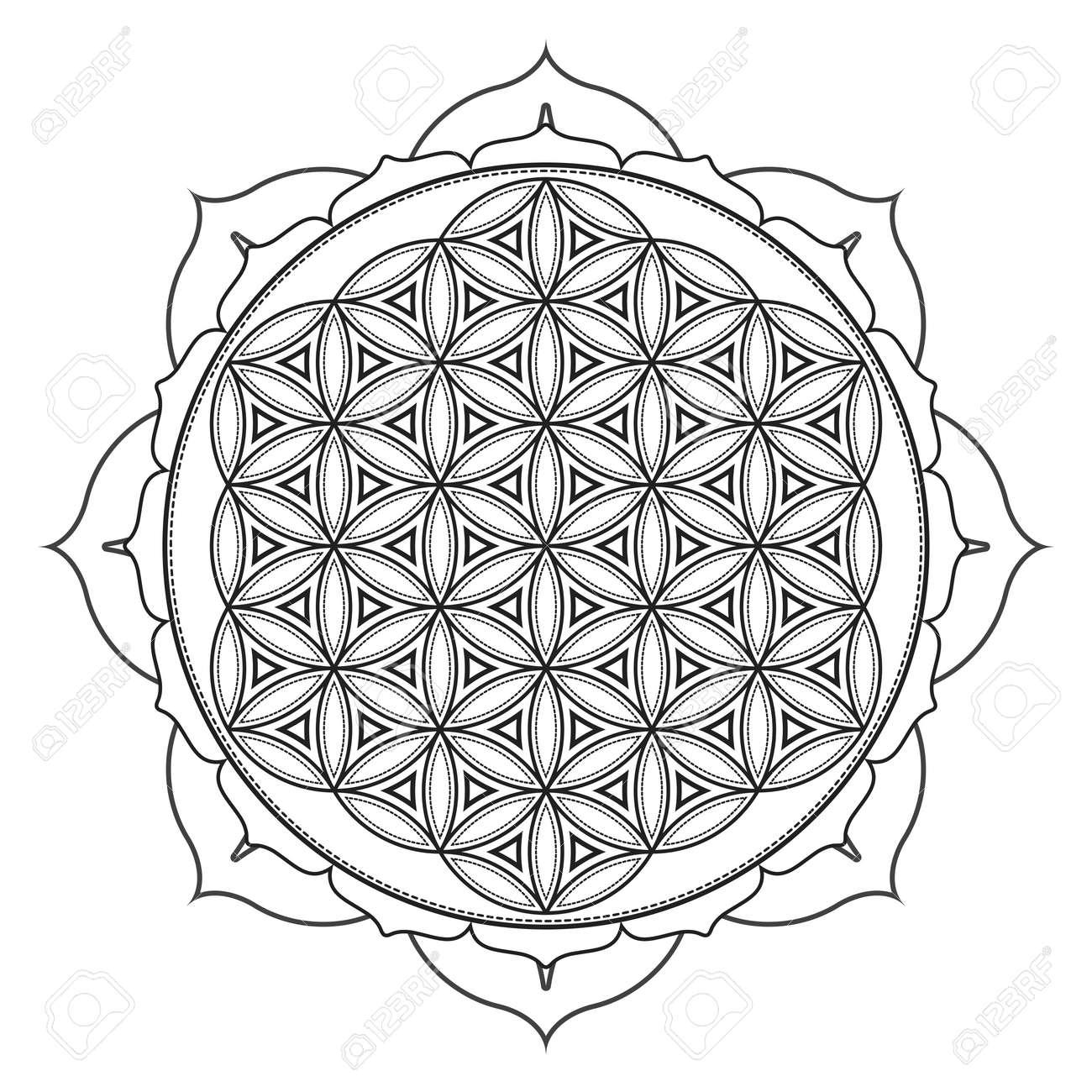 Vector Contour Zwart Wit Ontwerp Mandala Heilige Geometrie