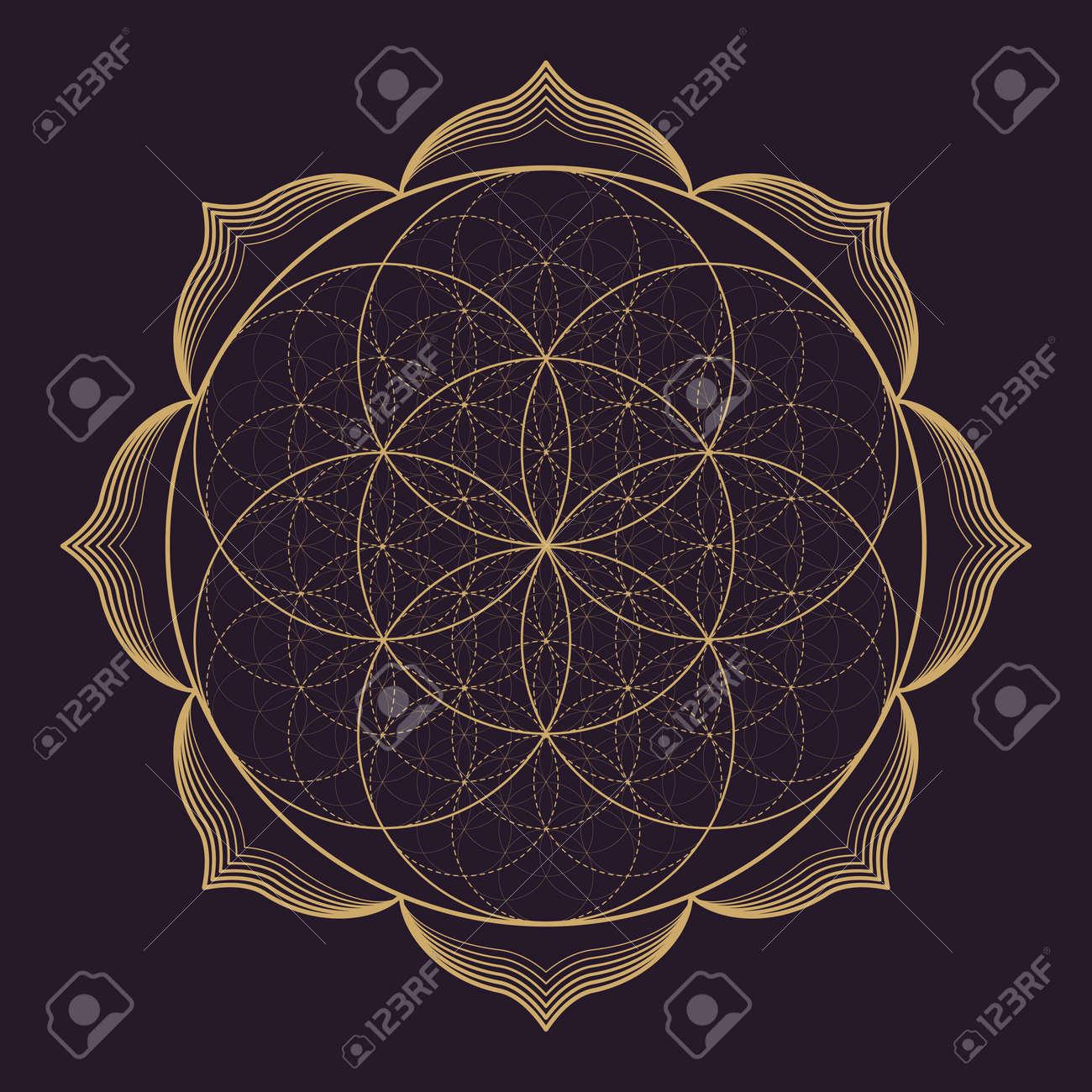 Vector Gold Monochrome Design Abstract Mandala Sacred Geometry